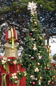 Kailua Kalikimaka Tree Lighting @ Emma's Square (located across from Hulihee Palace)