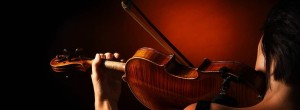The Chamber Orchestra of Kona in Concert @ The Hualalai Center